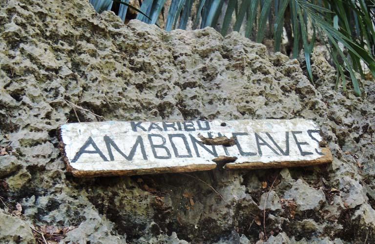 Amboni Caves tansania-Reisebericht