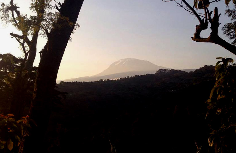 Kilimandscharo Moshi Kilimanjaro Wanderung Materuni waterfalls